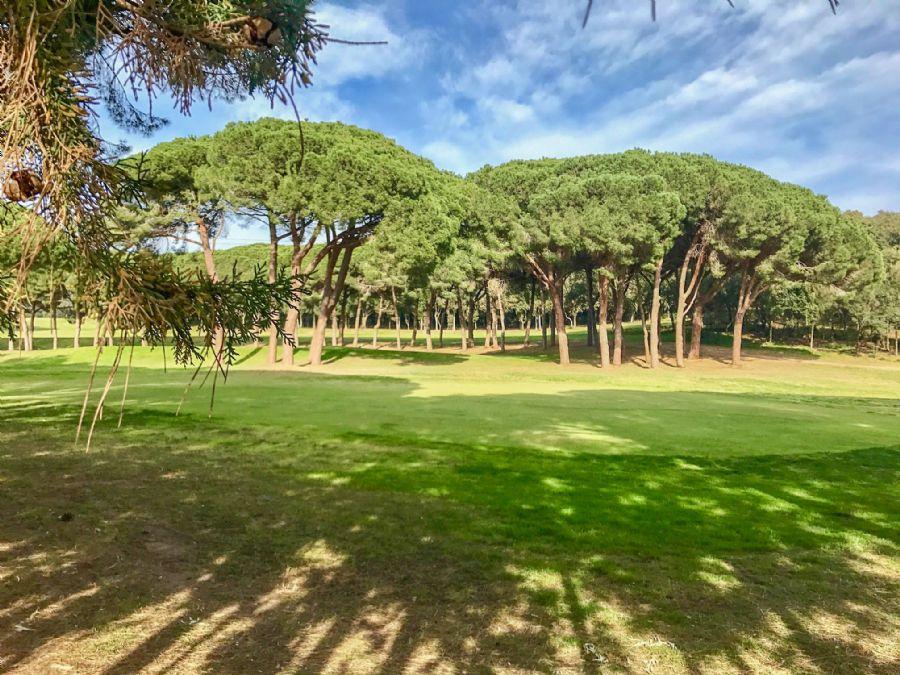 Punta Ala: Golf