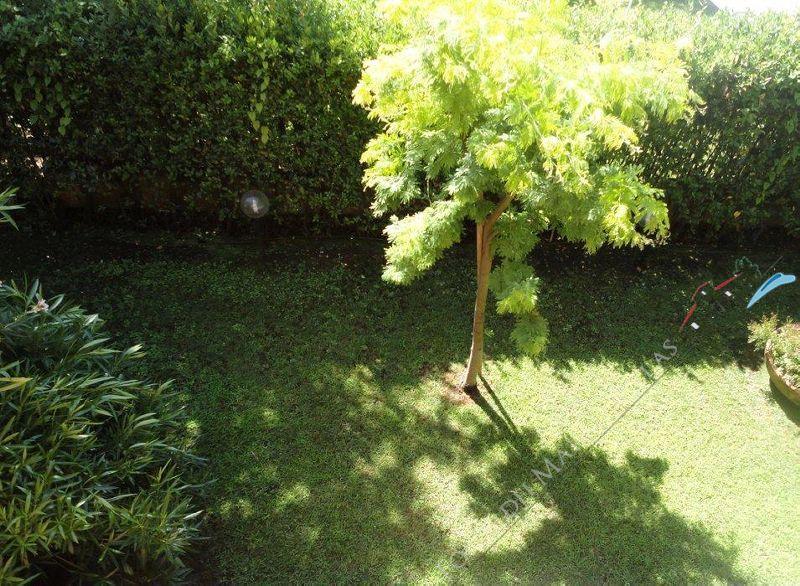 Villa Versilia Beach  : Garden