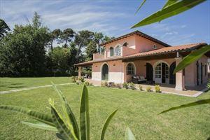 Villa Gilda  - Villa singola Forte dei Marmi