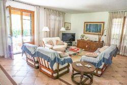 Villa Pietrasantese : Salotto
