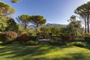 Villa Colletto Camaiore  : Garden