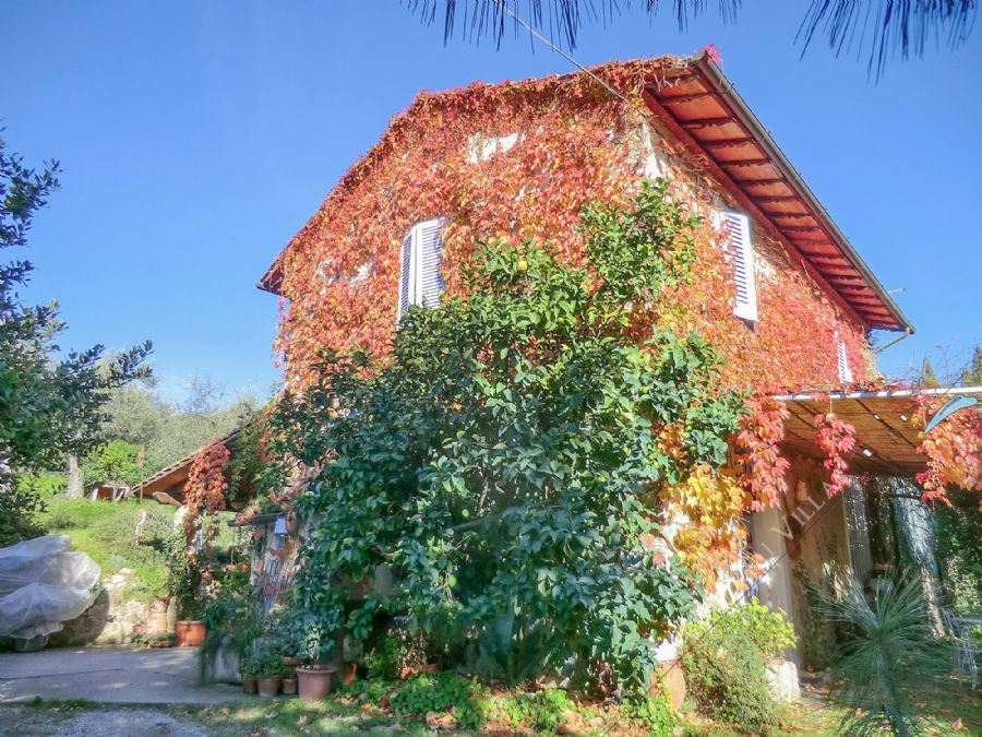 Villa La Rustica Detached villa  for sale  Camaiore
