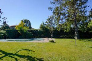 Villa Mirta : Vista esterna