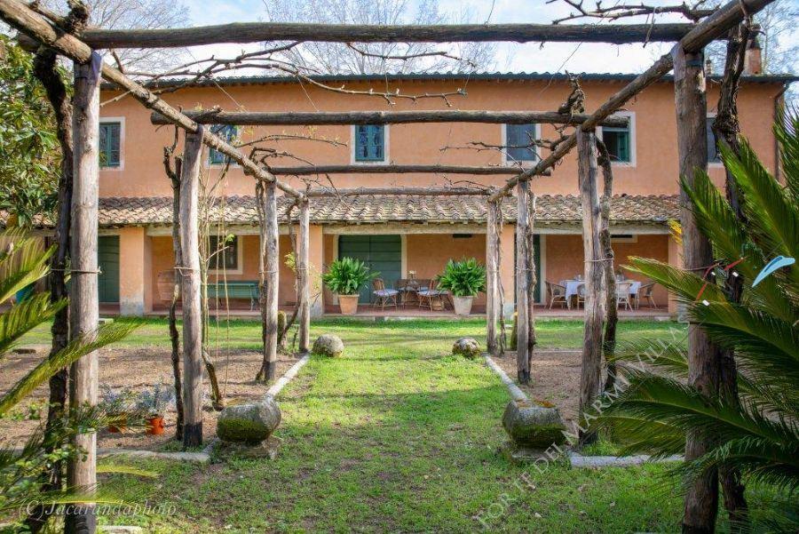 Villa Massaciuccoli - villa singola in affitto Viareggio