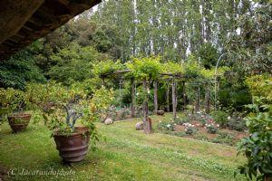 Villa Massaciuccoli : Вид снаружи