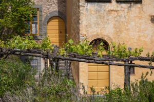 Borgo Lucchese : Outside view