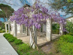 Villa Deliziosa : Vista esterna