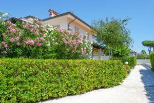 Villa Reggio : semi detached villa to rent Centro Forte dei Marmi