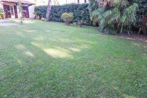 Villa Classica : Outside view