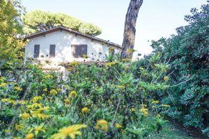 Villa Classica : Vista esterna