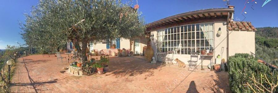 Villa Wineyard detached villa for sale Camaiore