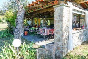 Villa Wineyard : Veranda