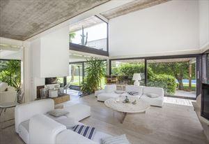 Villa Stone  : Salone