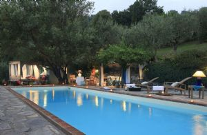 Villa Antico Uliveto : Swimming pool