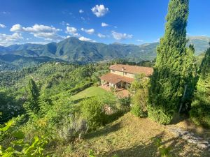 Villa Iolanda : detached villa for sale  Camaiore