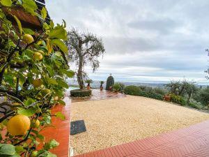 Villa Ginevra : Терраса