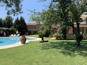 Villa il Gallo : detached villa to rent  Seravezza