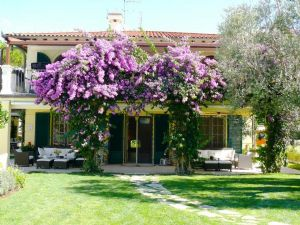Villa Diadema : Vista esterna