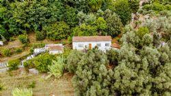 Villa    dei colli (con dependance ) CAMAIORE 6 vani ed oltre in vendita Camaiore