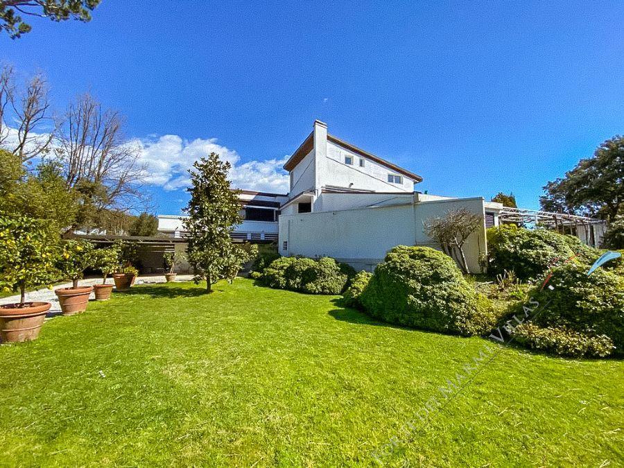 Villa Gardenia Forte dei Marmi villa singola in affitto Forte dei Marmi