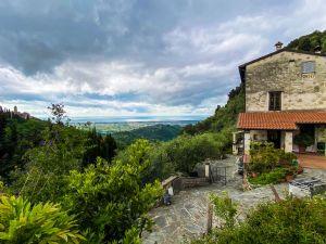 Villa Capezzana rustico in vendita  Camaiore