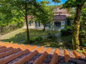Villa Visconti : Terrace