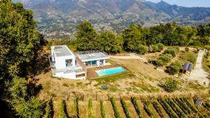 Villa Emotion View : villa singola in affitto e vendita  Forte dei Marmi