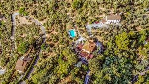 Villa Montebello 2 Villa singola  in affitto  Camaiore