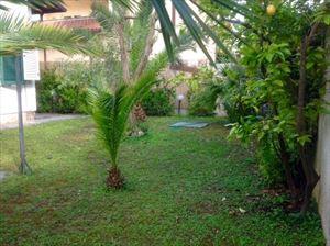 Villa dei Platani : Outside view