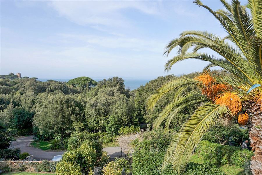 Villa Punta Ala : Outside view