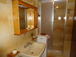 Villa Alfa  : Bathroom with shower