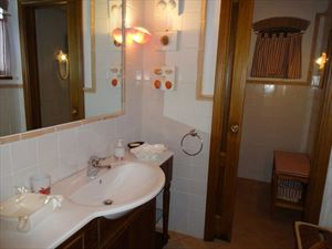 Villa Tenuta Magna  : Bathroom with shower