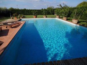 Villa dei Cedri villa bifamiliare in affitto e vendita  Camaiore