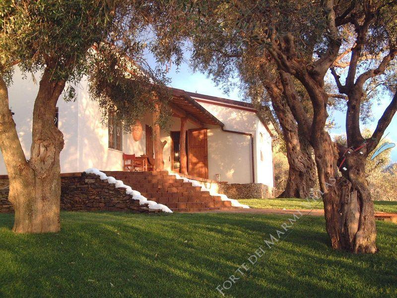 Villa Panorama : Vista esterna