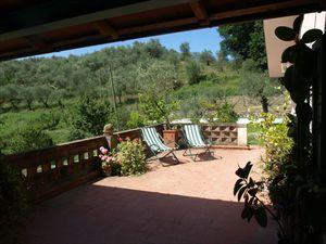Villa Marianna : Сад