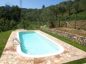 Villa Marianna : Бассейн