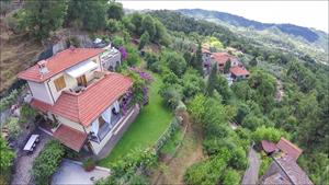 Villa Charme Toscana  : villa singola in affitto e vendita  Camaiore