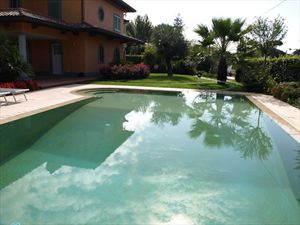 Villa delle Rose : Swimming pool