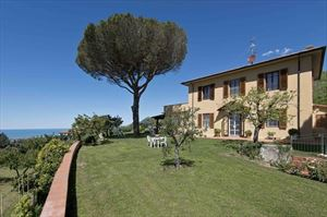 Villa Vineyard 2 : detached villa to rent and for sale  Camaiore
