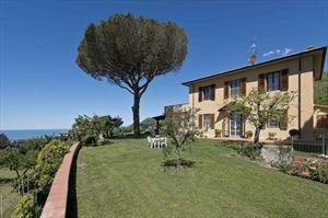Villa Vineyard : villa singola vendita  Camaiore
