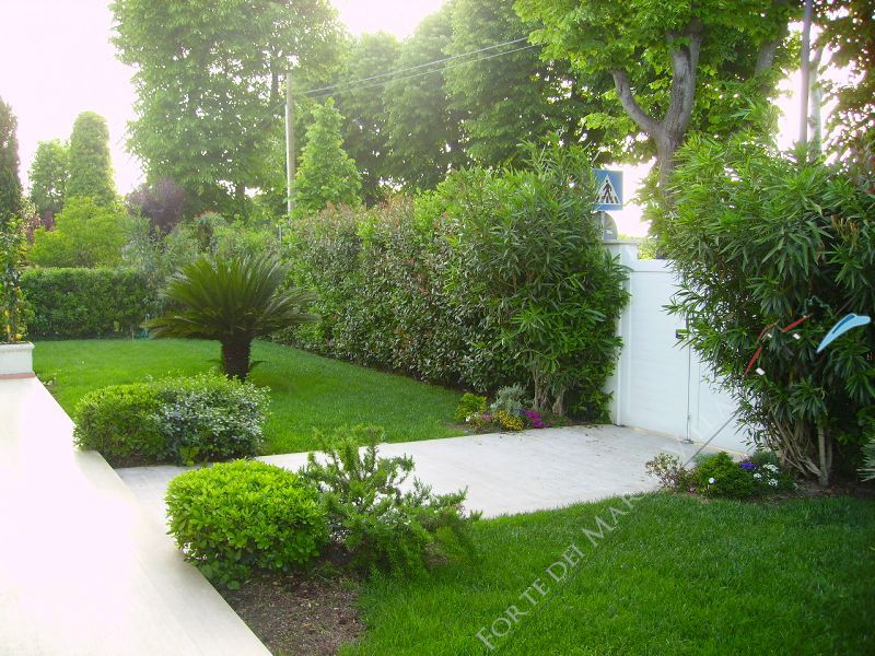 Villa Acquamarina : Garden