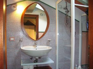 Appartamento Amore : Bathroom with shower