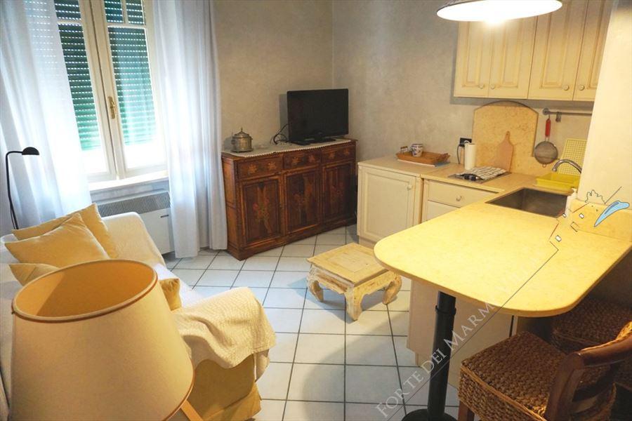 Monolocale Lorenzo appartamento in affitto Forte dei Marmi