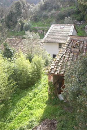 Villa Cipollini : Вид снаружи