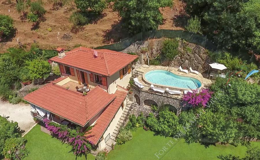 Villa Charme Toscana  - Detached villa Camaiore
