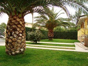 Villa Palma : Сад