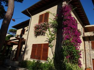 Villa del Mare : Outside view