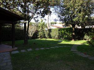 Villa Tranquilla : Outside view