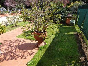 Villa Palazzetto : Villa a schiera Forte dei Marmi