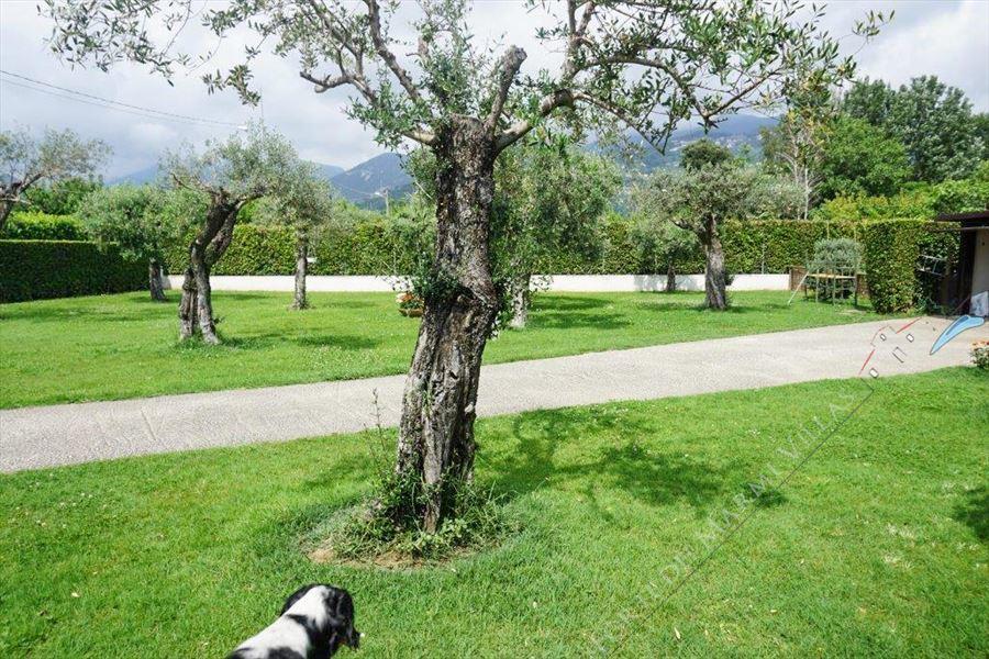 Villa Altais : Vista esterna
